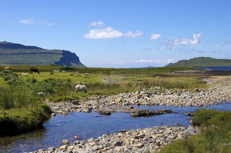 Schottland, Isle of Mull